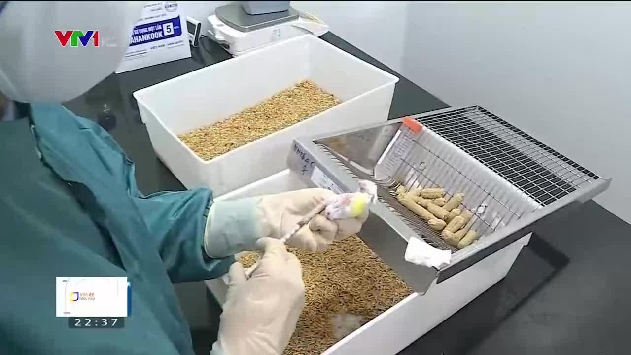 Vấn đề hôm nay | 30/10/2020 | Dự án vắc xin COVID-19 'made in Việt Nam' có triển vọng về đích sớm hay không?