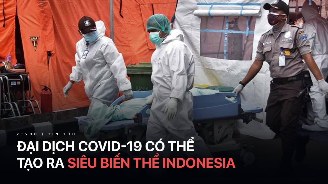 Đại dịch COVID-19 có thể tạo ra siêu biến thể Indonesia | Chuyển động 24h